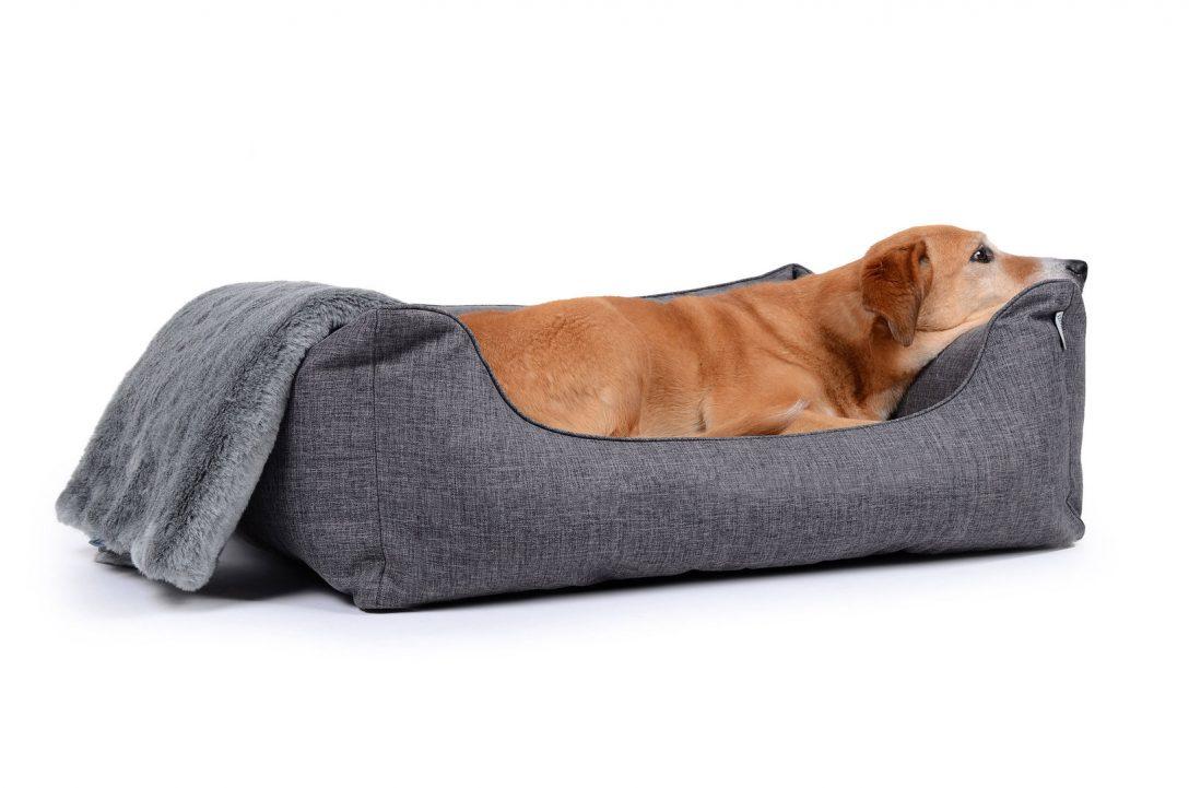 Large Size of Hunde Bett Mypado Hundebett Worldcollection Softline Polyester Waschbar 2x2m Clinique Even Better Make Up Cars Betten 200x200 Stauraum Mit Matratze Bett Hunde Bett