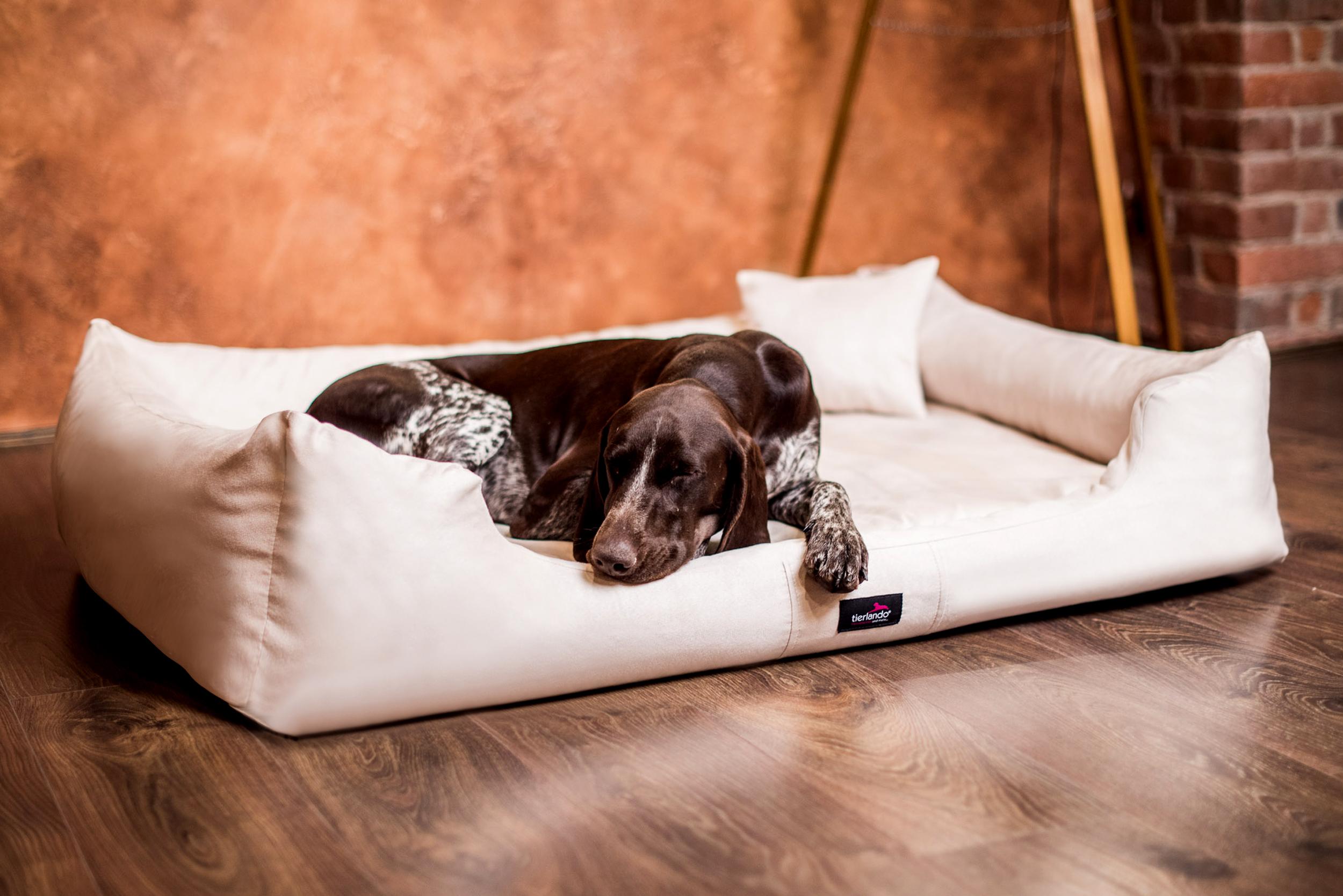 Full Size of Hunde Bett Orthopdisches Hundebett Pluto Visco Velours Tierlando Günstige Betten Stauraum 200x200 Luxus Mit Matratze Und Lattenrost 140x200 Sonoma Eiche Bett Hunde Bett