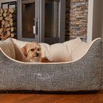Hunde Bett Bett Hundebett Test Wolke Flocke 90 Cm Rund Xxl Bitiba Kunstleder 125 Hundebettenmanufaktur Vitabed Orthopdisches Mit 5cm Matratze Hundebetten Betten 160x200