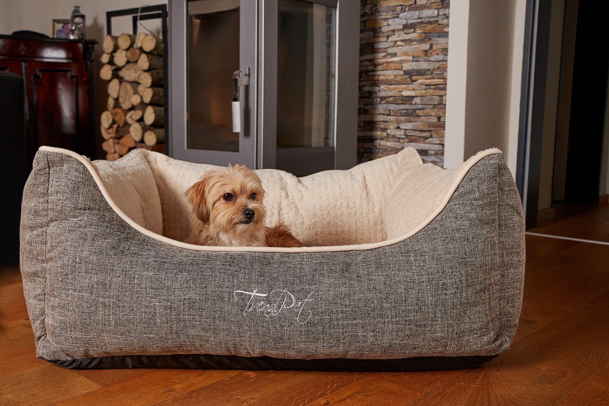 Full Size of Hundebett Test Wolke Flocke 90 Cm Rund Xxl Bitiba Kunstleder 125 Hundebettenmanufaktur Vitabed Orthopdisches Mit 5cm Matratze Hundebetten Betten 160x200 Bett Hunde Bett