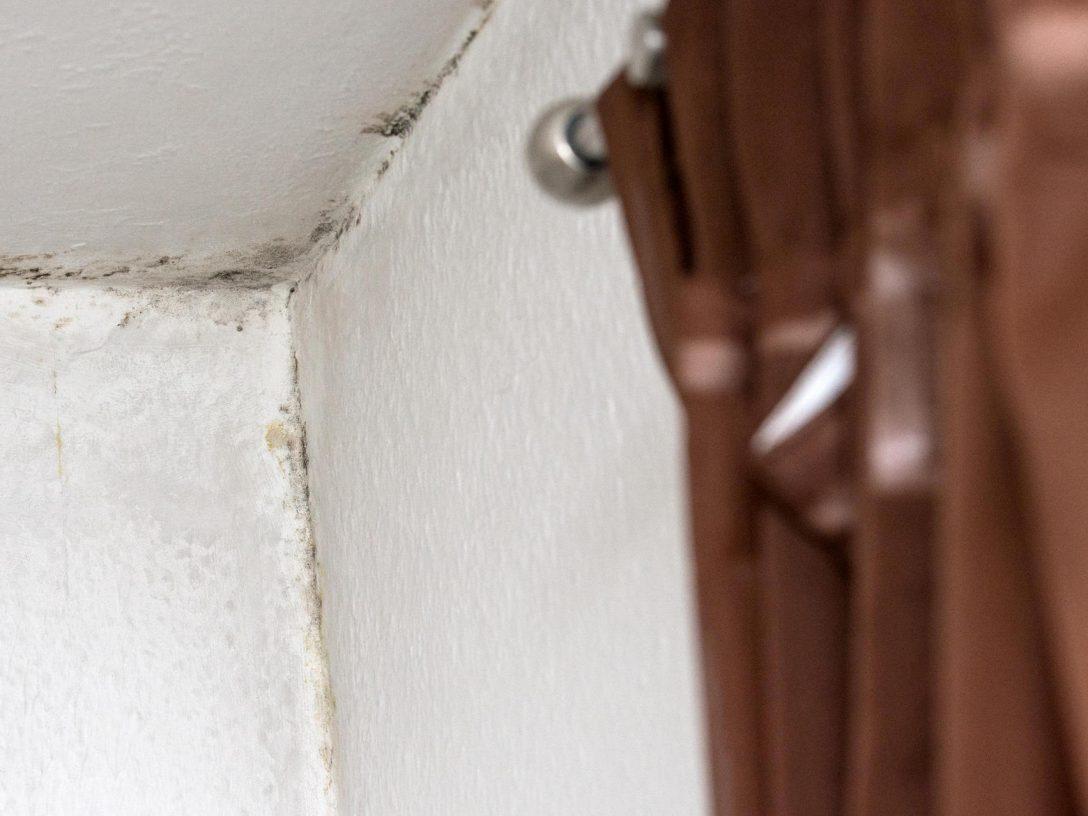 Large Size of Ab Wann Schimmel Im Haus Schdlich Ist Experten Interview Schlafzimmer Komplett Poco Bad Bentheim Hotel Günstig Wohnzimmer Board Wandtattoos Badezimmer Schlafzimmer Schimmel Im Schlafzimmer