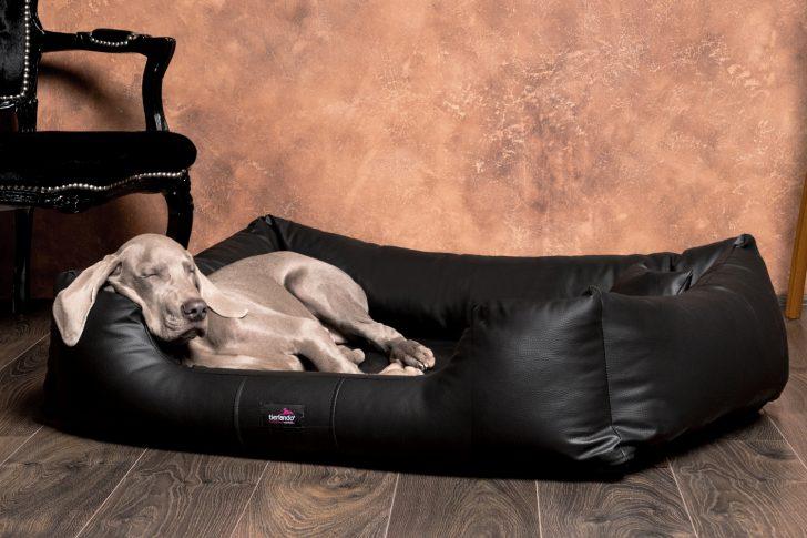 Medium Size of Hunde Bett Hundebett Flocke Erfahrungen Zooplus 90 Cm 125 Xxl Rund 120 Orthopdisches Milen Kunstleder Fr Allergiker Tierlando 200x180 Rausfallschutz 140x220 Bett Hunde Bett