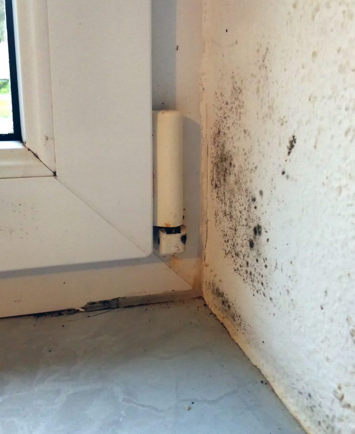 Medium Size of Schimmel Im Schlafzimmer An Der Wand Beseitigen Gesundheitsgefhrlich Nolte Kinderzimmer Regal Decke Wohnzimmer Komplett Weiß Waschbecken Badezimmer Schlafzimmer Schimmel Im Schlafzimmer