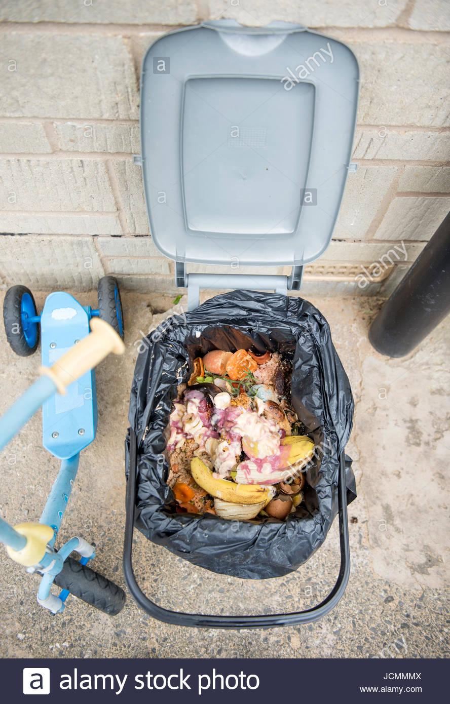 Full Size of Abfallbehälter Küche Mintgrün Kleine Einbauküche Günstige Mit E Geräten Günstig Barhocker L Pantryküche Kühlschrank Eckschrank Singelküche Küche Abfallbehälter Küche