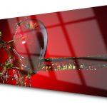 Glasbilder Küche Küche Glasbilder Küche Obi Glasbild Küche Apfel Glasbilder Küche Spritzschutz Glasbilder Küche Peperoni