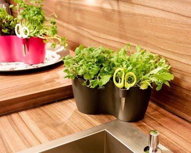Kräutertopf Küche Küche Kräutertöpfe Küche Ikea Kräutertopf Küche Kräutertopf Küche Pflege Kräutertopf Küche Schwarz