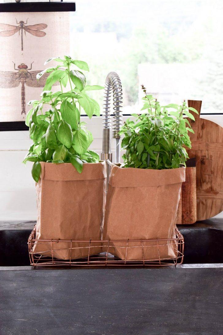 Medium Size of Kräutertopf Küche Wand Kräutertöpfe Küche Wand Kräutertopf Küche Schwarz Kräutertopf Für Die Küche Küche Kräutertopf Küche
