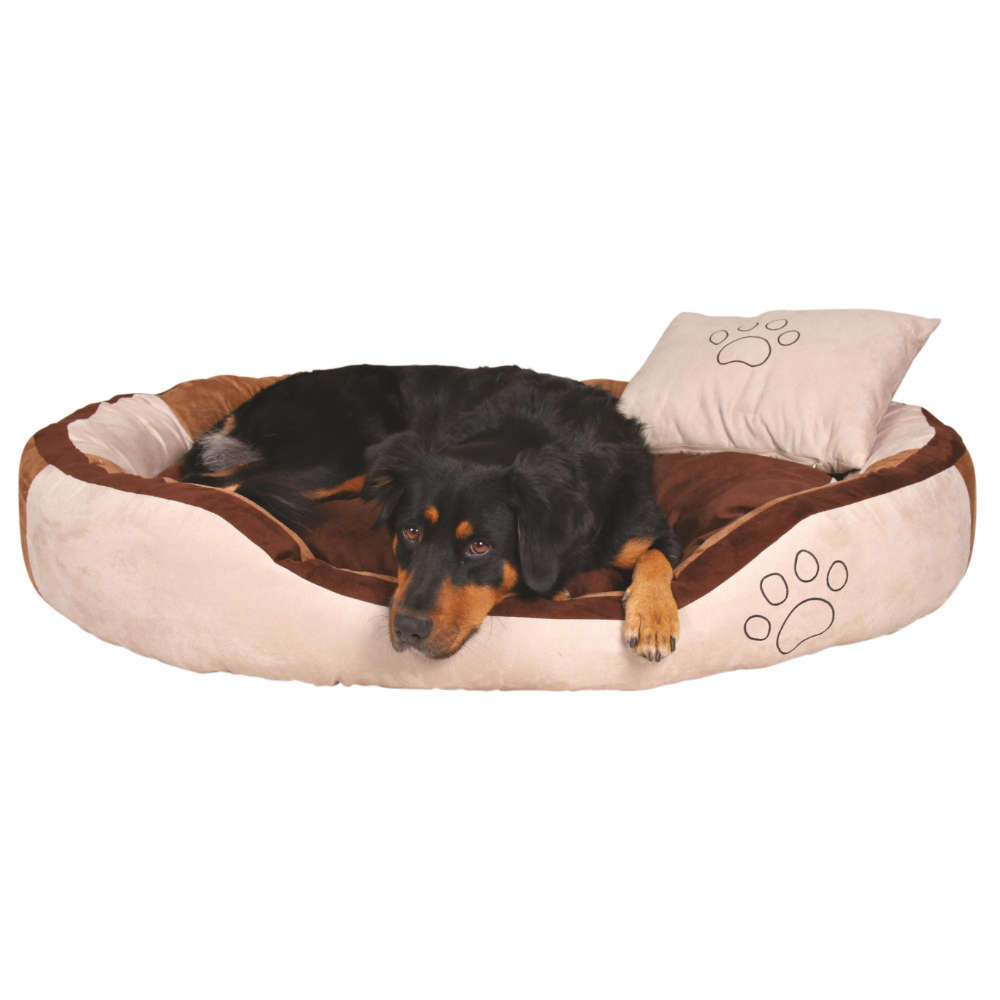Full Size of Hunde Bett Hundebett Flocke Bitiba Auto Erfahrungen Test Wolke Hundebettenmanufaktur Kunstleder 125 Cm Kaufen Zooplus 120 Xxl Holz Rund Trixie Bonzo Bett Hunde Bett