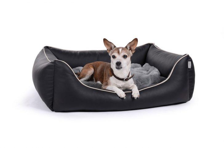 Medium Size of Hunde Bett Hundebettenmanufaktur Hundebett Flocke 125 Cm Xxl Wolke Holz Aus Schmutzresistentem Kunstleder Worldcollection King Size 220 X 120x200 Mit Matratze Bett Hunde Bett