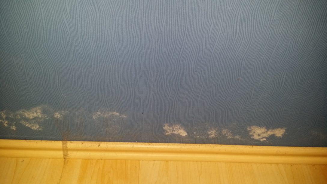 Large Size of Schwarzer Schimmel Im Schlafzimmer Liegt Baumangel Vor Ferienwohnung Bad Dürkheim Armaturen Badezimmer Led Deckenleuchte Wohnzimmer Hochschrank Schrankwand Schlafzimmer Schimmel Im Schlafzimmer