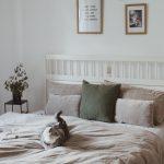 Amerikanisches Bett Bett Amerikanisches Bett Inspiration Machs Dir Kuschelig Pinolino Betten Köln 180x200 Hunde Outlet Rauch 140x200 Landhaus Ausstellungsstück Mit Beleuchtung