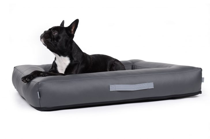 Medium Size of Hunde Bett Hundebett Wolke Flocke Kaufen Auto 125 120 Cm Bitiba Rund Zooplus Test Xxl 90 Kunstleder Erfahrungen Holz Hundebettenmanufaktur Aus Bett Hunde Bett