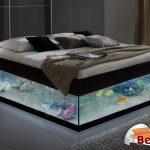 Betten De Bett Leuchtendes Aquariumbett Bettende Home Decor Deckenlampen Wohnzimmer Modern Billerbeck Betten Deckenlampe Esstisch Makler Baden Stellenangebote Württemberg