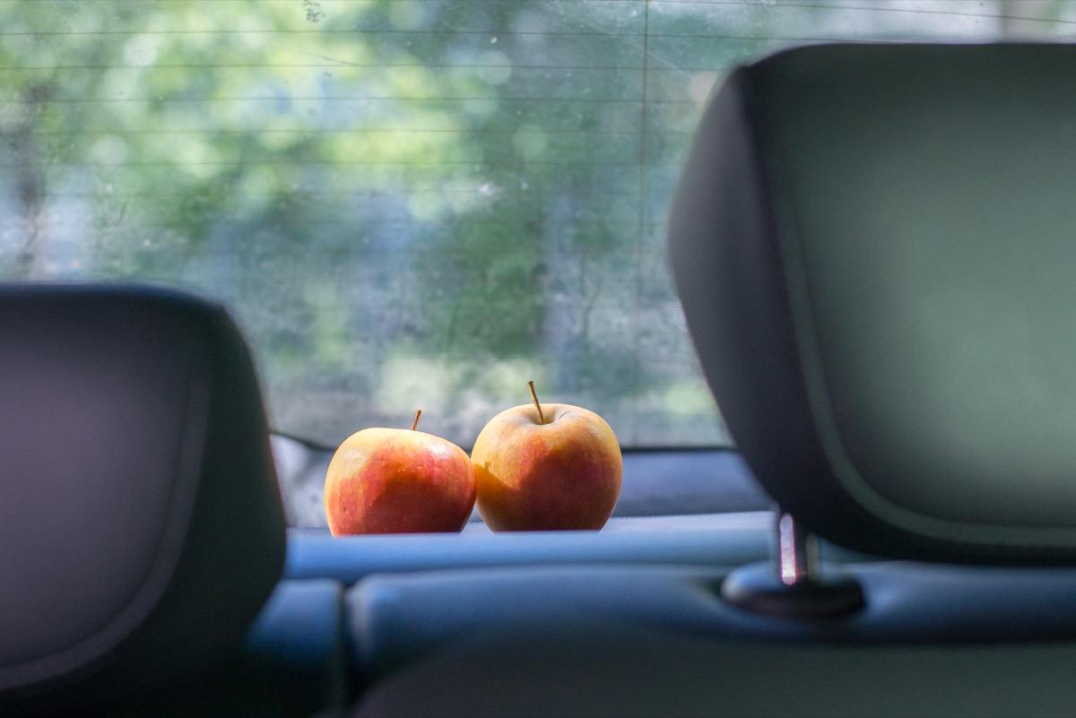 Full Size of Rauch Geruch Neutralisieren Auto Geruch Im Auto Neutralisieren Mit Kaffee Tabak Geruch Neutralisieren Auto Geruch Im Auto Neutralisieren Essig Küche Gerüche Neutralisieren Auto