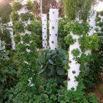 Vertikal Garten Garten Vertical Garden Design Pdf Gardening Tower Indoor Amazon Diy Vertikal Wall Ideas Vertikaler Garten Relaxsessel Gewächshaus Leuchtkugel Holzhaus Trampolin