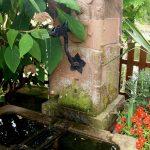 Brunnen Im Garten Garten Julitouren 2018 Der Katzsche Garten Mein Schöner Abo Relaxliege Regal Babyzimmer Korb Badezimmer Teppich Wohnzimmer Deckenleuchte Gewächshaus Whirlpool Bad