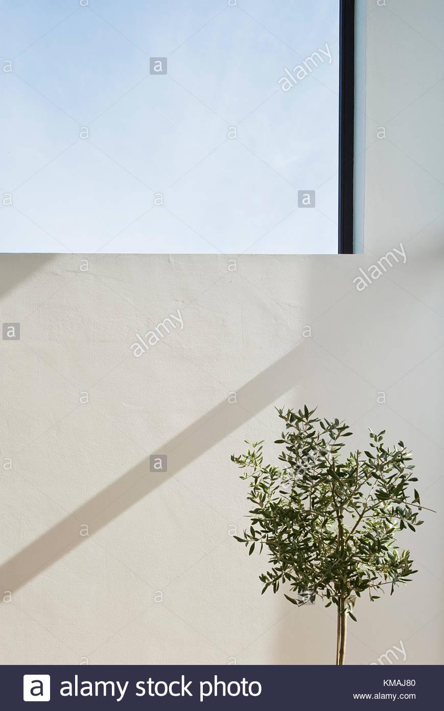 Full Size of Fenster Hannover Haus Felux Internorm Preise Jalousie Insektenschutz Für Einbruchschutz Nachrüsten Salamander 120x120 Holz Alu Schüco Verdunkeln Fenster Fenster Hannover