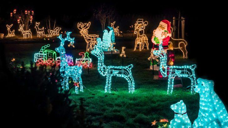 Weihnachtsbeleuchtung Fenster Innen Led Silhouette Stern Figuren Batterie Batteriebetrieben Befestigen Bunt Pyramide Mit Kabel Hornbach Was Ist Eigentlich Fenster Weihnachtsbeleuchtung Fenster