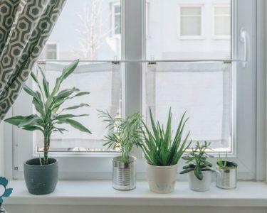 Sichtschutzfolien Für Fenster Fenster Sichtschutzfolien Für Fenster Sichtschutz Wohnzimmer Velux Ersatzteile Einbruchsicher Nachrüsten Aluplast Sonnenschutz Mit Integriertem Rollladen Plissee