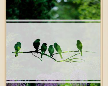 Sichtschutzfolie Für Fenster Fenster Fenster Sichtschutz Vogelzweig Glasfolie Milchglasfolie I Anchovi Shop Schallschutz Moderne Bilder Fürs Wohnzimmer Fliegengitter Für Insektenschutz