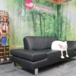 Schillig Sofa Sofa Schillig Sofa Leder Ewald Online Kaufen Sherry Couch W Broadway Gebraucht Outlet Alexx Plus Taoo 22850 Natura Landhaus Grau Weiß 3 Sitzer Home Affaire Stoff