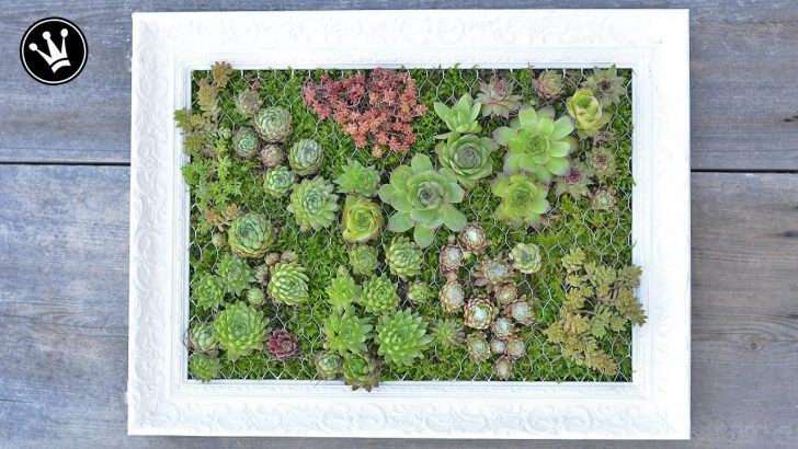 Medium Size of Vertikal Garten Diy Mit Sukkulenten Bepflanzter Bilderrahmen Vertikaler Sichtschutz Wpc Bewässerungssysteme Test Bewässerungssystem Schwimmingpool Für Den Garten Vertikal Garten
