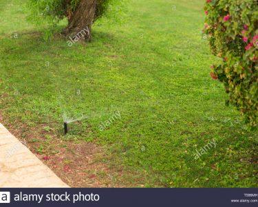 Garten Bewässerung Automatisch Garten Beistelltisch Garten Mini Pool Sichtschutz Im Stapelstühle Tisch Gaskamin Bewässerung Automatisch Trampolin Sonnenschutz Und Landschaftsbau Hamburg