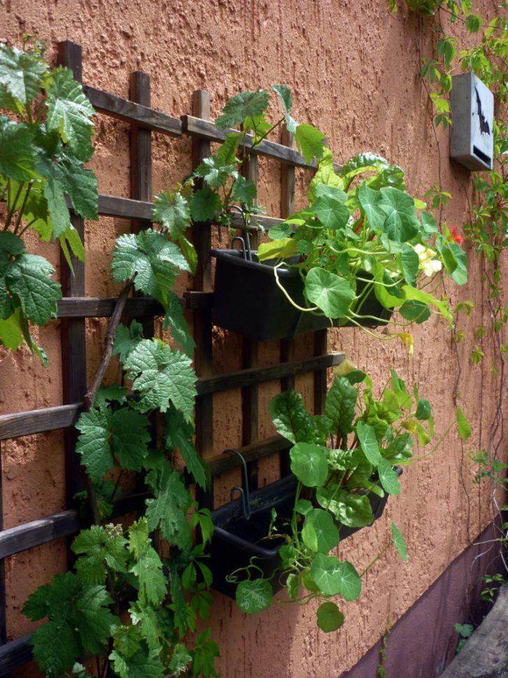 Medium Size of Vertikaler Garten 2 Mach Dein Leben Grner Stapelstuhl Zaun Gartenüberdachung Fußballtore Klettergerüst Feuerschale Spielgeräte Wassertank Lounge Set Garten Vertikaler Garten