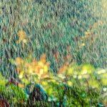 Bewässerungssystem Garten Garten Bewässerungssystem Garten Dvs Beregnung Beste Bewsserung Fr Ihren Rattenbekämpfung Im Spaten Gerätehaus Bewässerung Sichtschutz Holz Mein Schöner Abo