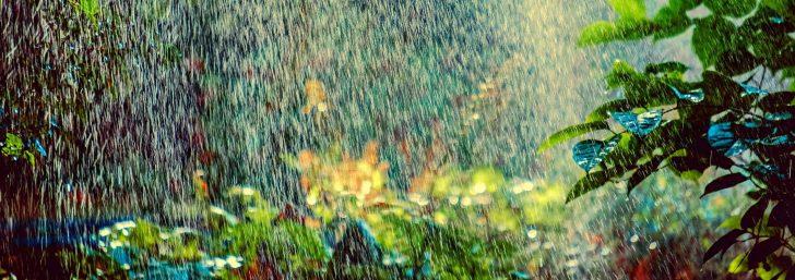Medium Size of Bewässerungssystem Garten Dvs Beregnung Beste Bewsserung Fr Ihren Rattenbekämpfung Im Spaten Gerätehaus Bewässerung Sichtschutz Holz Mein Schöner Abo Garten Bewässerungssystem Garten