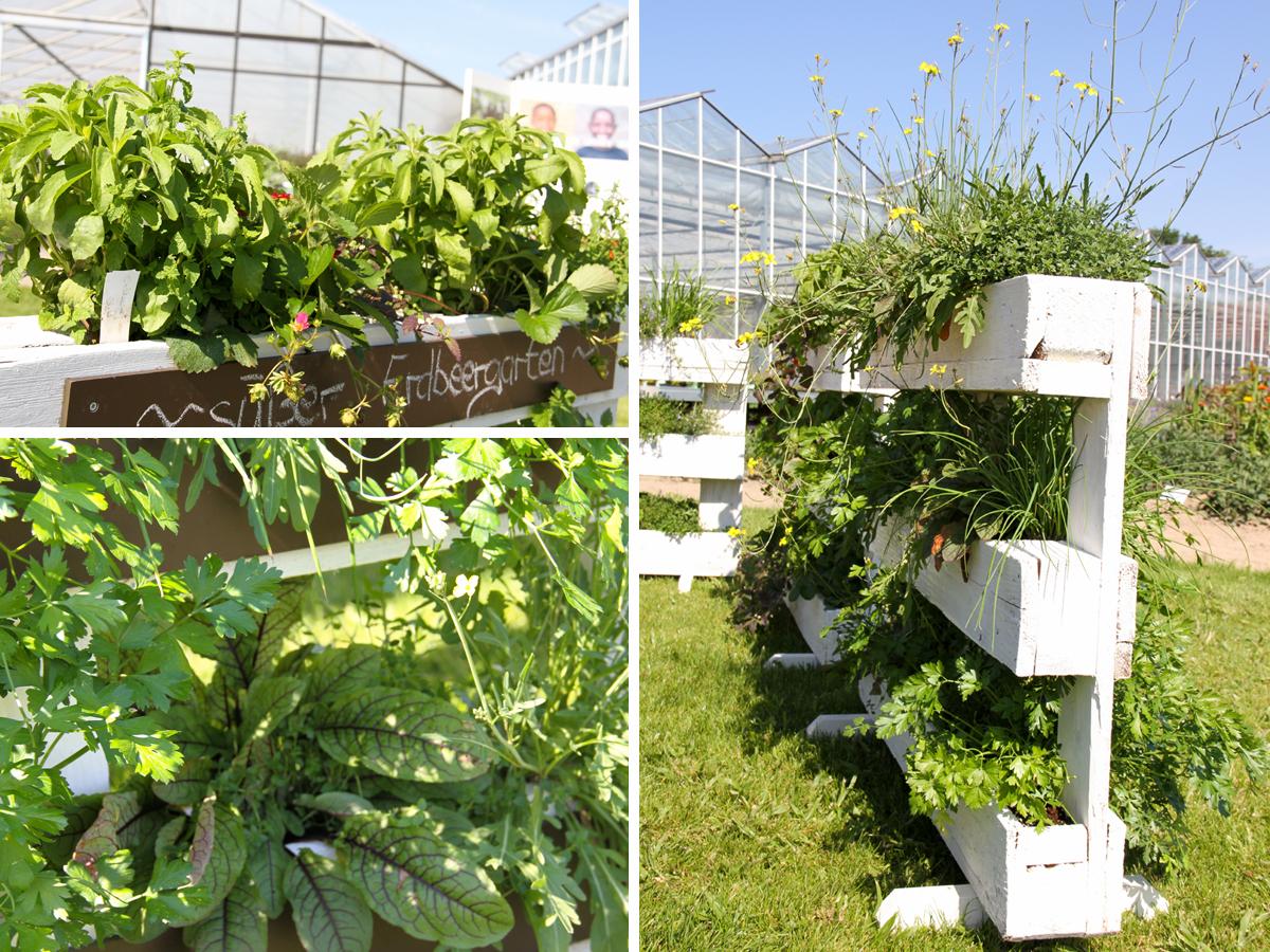 Full Size of Vertikal Garten Vertical Garden Indoor Amazon Design Pdf Plants Plans Diy Kit Vegetable Gardening Ideas Systems Book In India Construction Details Pots Berlin Garten Vertikal Garten
