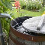 Wassertank Garten Garten Wassertank Garten Eckig Unterirdisch 2000l 10000l 1000l Flach Gebraucht Oberirdisch Obi Toom Regenwassernutzung Regenwasser Sammeln Und Einsetzen Ratgeber