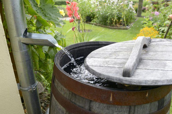 Medium Size of Wassertank Garten Eckig Unterirdisch 2000l 10000l 1000l Flach Gebraucht Oberirdisch Obi Toom Regenwassernutzung Regenwasser Sammeln Und Einsetzen Ratgeber Garten Wassertank Garten