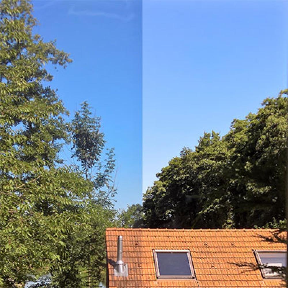 Full Size of Alu Fenster Rundes Sonnenschutz Für Innen Velux Preise Holz Absturzsicherung Einbau Sichtschutz Insektenschutzgitter Rollos Verdunkeln Insektenschutz Fenster Sonnenschutzfolie Fenster