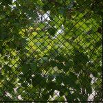 Filepalais Schnborn Volkskundemuseum Wien 2018 Garten Zaun 1jpg Spielhaus Sitzbank Trampolin Relaxsessel Bewässerung Fussballtor Pavillion Sitzgruppe Holzhaus Garten Garten Zaun