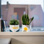 D C Home Ideas Inspiration Fenster Marken Weru Gardinen Konfigurieren Velux Preise Landhaus Tapeten Für Küche Gebrauchte Kaufen Kunststoff Polnische Fenster Klebefolie Für Fenster