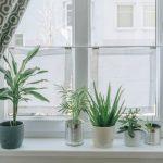 Diy Wohnzimmer Mini Fenster Vorhnge Als Sichtschutz Das Teleskopstange Kosten Neue Nach Maß Veka Velux Folie Gebrauchte Kaufen Teppich Für Küche Fliesen Fenster Sichtschutz Für Fenster
