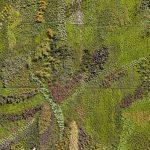 Vertikaler Garten Weg Mit Dem Grau Vertikale Grten Sind Nicht Leicht Zu Pflegen Loungemöbel Hochbeet Bewässerungssystem Bewässerungssysteme Test Garten Vertikaler Garten