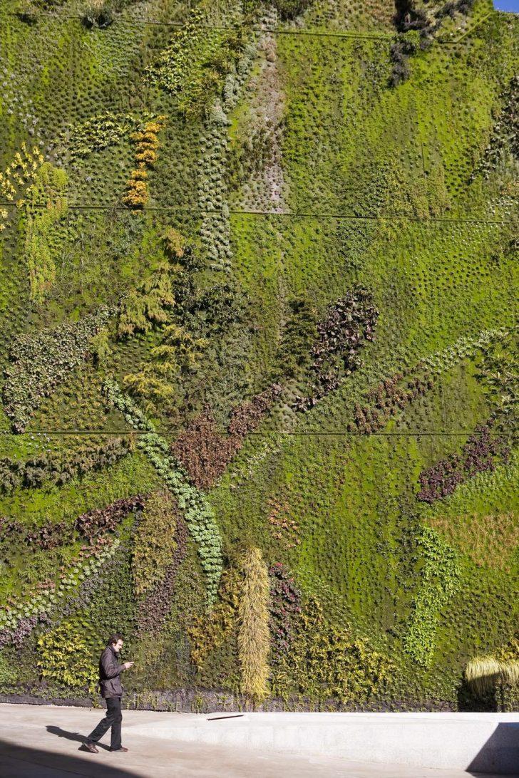 Medium Size of Vertikaler Garten Weg Mit Dem Grau Vertikale Grten Sind Nicht Leicht Zu Pflegen Loungemöbel Hochbeet Bewässerungssystem Bewässerungssysteme Test Garten Vertikaler Garten