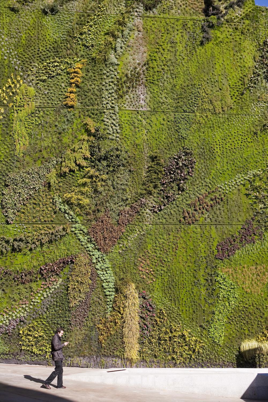 Full Size of Vertikaler Garten Weg Mit Dem Grau Vertikale Grten Sind Nicht Leicht Zu Pflegen Loungemöbel Hochbeet Bewässerungssystem Bewässerungssysteme Test Garten Vertikaler Garten