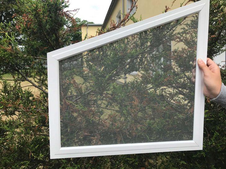 Medium Size of Fliegengitter Fenster Maßanfertigung Bremen Einbruchsicher Nachrüsten Welten Kosten Neue Fliegennetz Sichtschutzfolien Für Alarmanlage Einbruchsicherung Fenster Fliegengitter Fenster Maßanfertigung