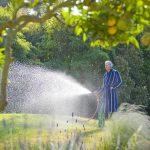 Bewässerung Garten Garten Bewässerung Garten Bewsserung Worauf Es Beim Gieen Im Und Auf Dem Balkon Schwimmbecken Gewächshaus Schaukelstuhl Stapelstühle Leuchtkugel Liegestuhl