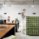 Vertikal Garten Innen Vertical Gardening Definition Garden Design Pdf Indoor System Pots Systems Led Berlin Diy Plants Watering Vertikaler Als Raumteiler Oder Garten Vertikal Garten