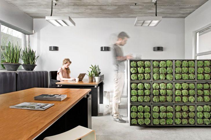 Medium Size of Vertikal Garten Innen Vertical Gardening Definition Garden Design Pdf Indoor System Pots Systems Led Berlin Diy Plants Watering Vertikaler Als Raumteiler Oder Garten Vertikal Garten
