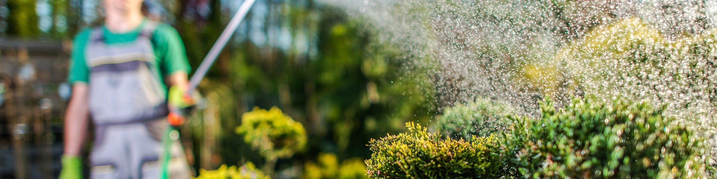 Full Size of Bewässerungssysteme Garten Test Bewsserung Produkte Im Vergleich 2020 Heimwerkerde Edelstahl Whirlpool Liegestuhl Fußballtore Lounge Sofa Sichtschutz Holz Garten Bewässerungssysteme Garten Test