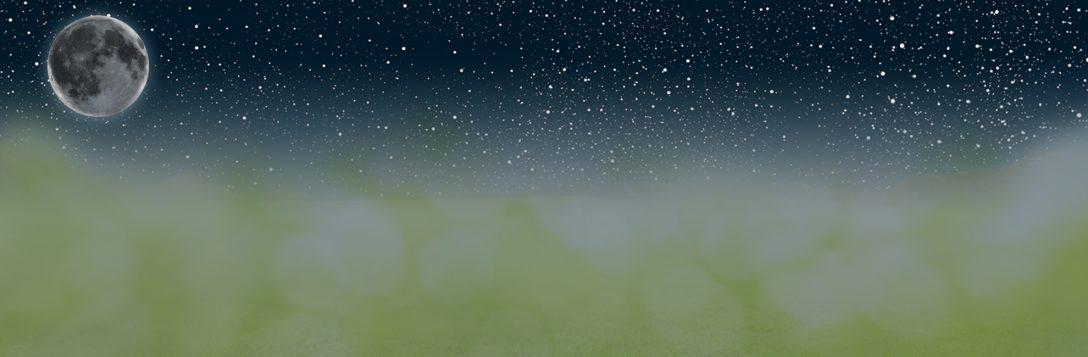 Large Size of Sonnenschutz Fenster Rollo Plissee Velux Einbauen Bauhaus Weru Mit Lüftung Sichtschutzfolien Für Kunststoff Sichtschutz Veka Rehau Hannover Neue Kosten Fenster Sonnenschutz Fenster