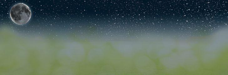 Medium Size of Sonnenschutz Fenster Rollo Plissee Velux Einbauen Bauhaus Weru Mit Lüftung Sichtschutzfolien Für Kunststoff Sichtschutz Veka Rehau Hannover Neue Kosten Fenster Sonnenschutz Fenster