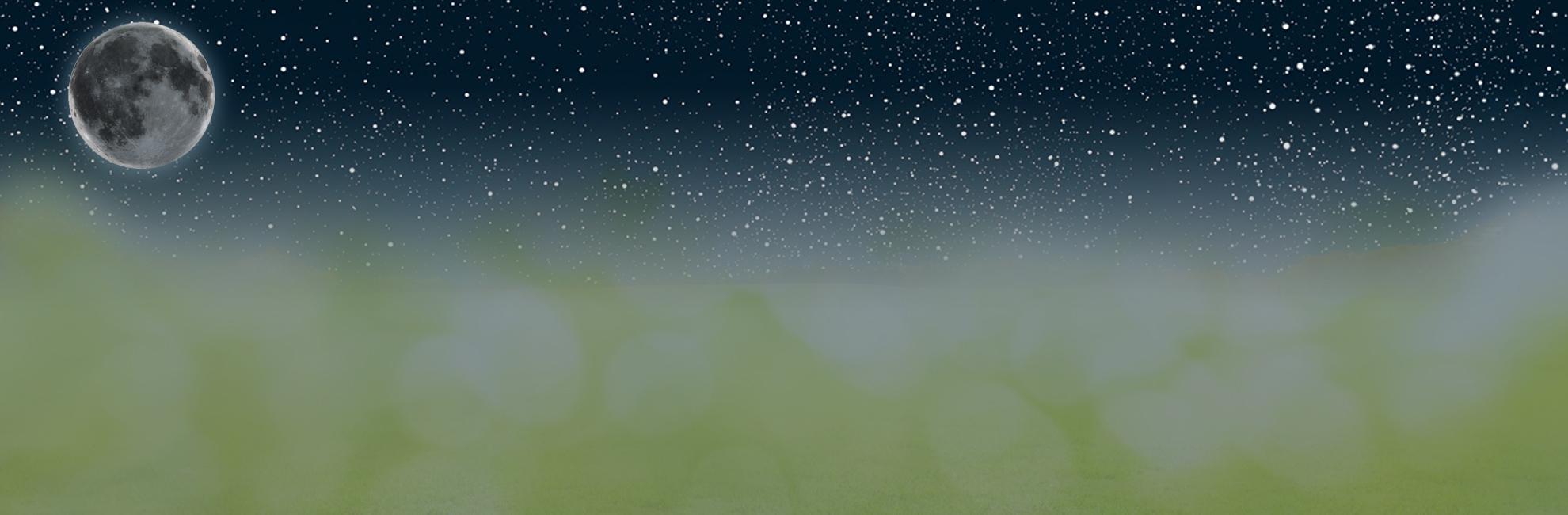 Full Size of Sonnenschutz Fenster Rollo Plissee Velux Einbauen Bauhaus Weru Mit Lüftung Sichtschutzfolien Für Kunststoff Sichtschutz Veka Rehau Hannover Neue Kosten Fenster Sonnenschutz Fenster