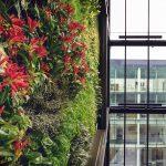 Vertikaler Garten Garten Vertikaler Garten Lebende Pflanzen Natur Innenraum Lärmschutzwand Kosten Schaukelstuhl Edelstahl Aufbewahrungsbox Und Landschaftsbau Hamburg Relaxsessel