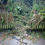 Garten Versicherungen Check24 Versicherung Huk Vergleich Versichern Allianz Ergo Generali Ratgeber Wer Haftet Bei Sturmschden Vertikal Whirlpool Aufblasbar Garten Garten Versicherung